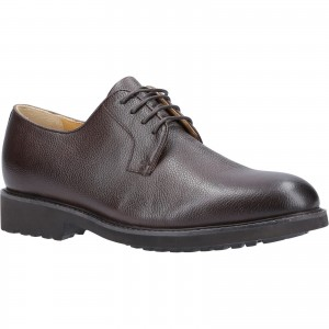 Steptronic Ilford Derby Formal Shoes Brown (Sizes 7-11)