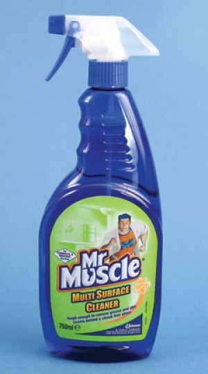 Mr Muscle Trigger Spray Multi Surface Cleaner 750ml